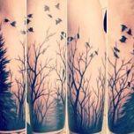 Robs trees