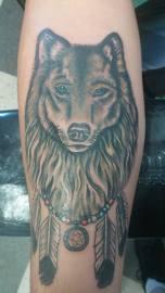 Blue Eyed Wolf Head